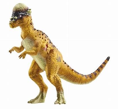 Jurassic Toy Toys Hasbro Dinosaurs Pachycephalosaurus Rex