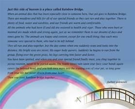 rainbow bridge for cats the rainbow bridge tim and s orkney website