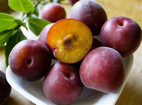 Black Velvet Apricot (5pcs) — MomoBud