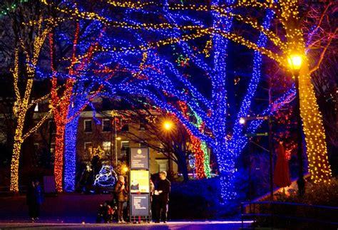 dc zoo lights lights around the globe