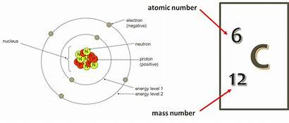 Atom Nucleus Electrons Electron Energy Levels Protons