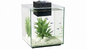 NANO TANKS: SMALL CAN BE FUN Home aquarium tips