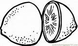 Lemon Coloring Limes Lemons Printable Pages Food Fruits sketch template