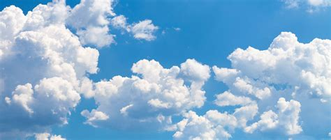 cloud storage services consumer reports