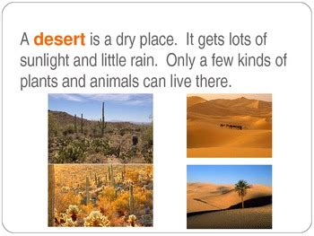 A species habitat can be seen as the physical manifestation of its ecological niche. Habitats - Desert by Stephanie Pope   Teachers Pay Teachers