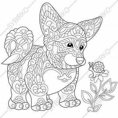 Corgi Coloring Pages Welsh Dog Drawing Puppy