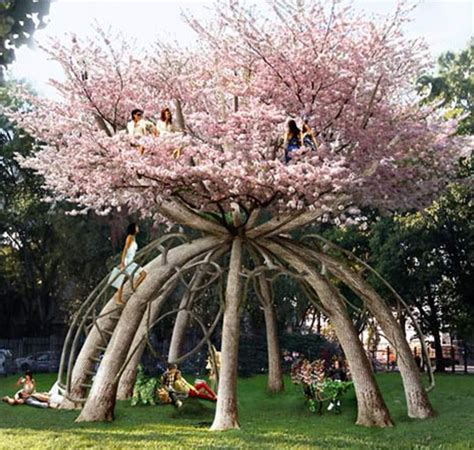 trees suitable for planting near houses the phytophactor tree house