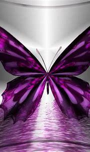 images butterflies - HD Desktop Wallpapers | 4k HD