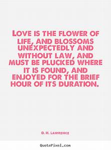 D. H. Lawrence picture quotes - Love is the flower of life ...