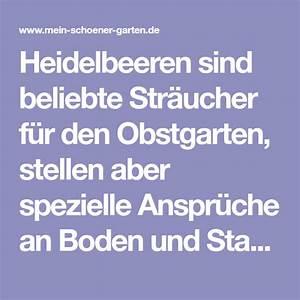 Blühende Sträucher Für Sonnigen Standort : heidelbeeren richtig pflanzen heidelbeeren heidelbeeren ~ Watch28wear.com Haus und Dekorationen