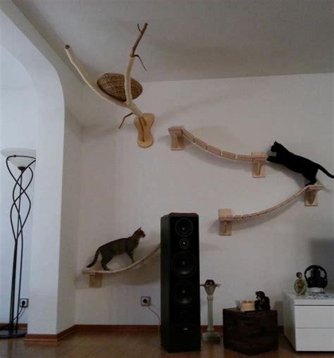 german cat owner builds felines gigantic obstacle