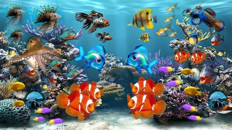 fond d ecran aquarium fond d 233 cran poissons gratuit fonds 233 cran aq 1265 hd desktop wallpaper free hd wallpapers