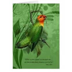 condolences for loss of pet pet sympathy loss of a bird lovebird greeting card zazzle