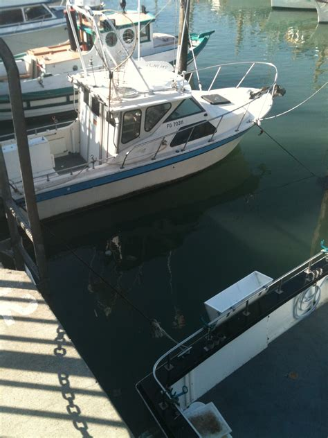 Grady White Boats For Sale In San Francisco by 6 Pack Charter Boat Beachcraft Reniell Not A Grady White