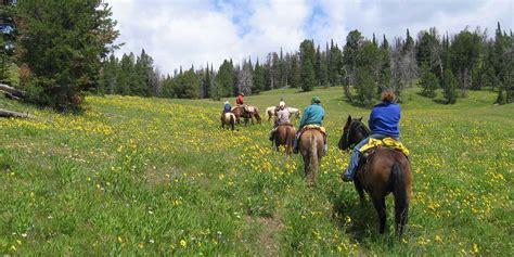 yellowstone riding horseback adventure river adventures paradise down