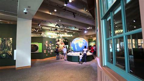 north carolina museum  natural sciences raleigh nc