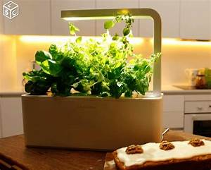 Herbes Aromatiques Interieur Herbes Aromatiques 15 Fa Ons