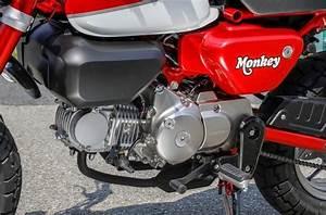 Honda Monkey 125 2018 : new 2018 honda monkey 125 review specs buyer 39 s guide ~ Kayakingforconservation.com Haus und Dekorationen