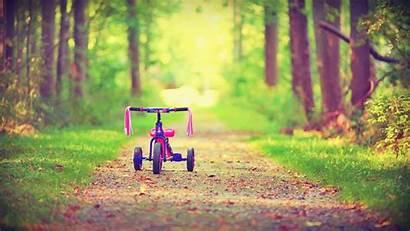 Desktop Bicycle Background Road Forest Backgrounds Children