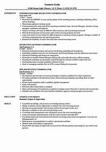 Coordinator Resume Examples Coordinator Recruiting Resume Samples Velvet Jobs