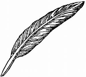 Quill And Paper Clipart - Clipart Suggest