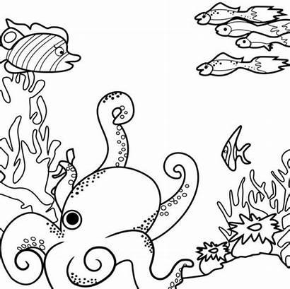 Coloring Sea Pages Monsters Ocean Printable Drawing