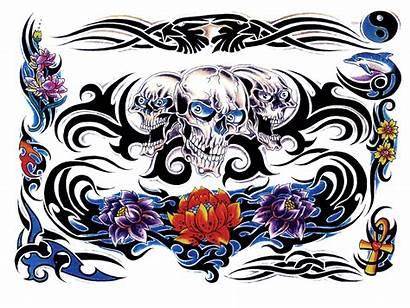 Tattoo Transparent Flash Colour Tatto Sets Background