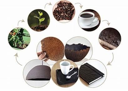Coffee Based Koffiedik Kijken Siemen Cox Interview