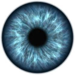 Free illustration: Eye, Iris, Vision, Human, Sight - Free ...