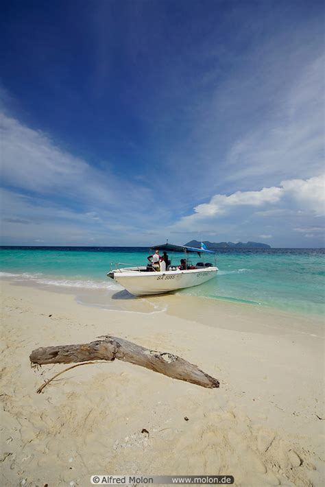 Speed Boat Malaysia by Speedboat On And Tree Trunk Picture Pom Pom Sabah
