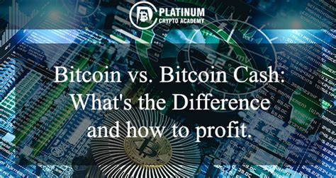 Ethereum, litecoin, and ripple are examples of altcoins that have remained on top of the marketplace, following bitcoin. Bitcoin Vs Bitcoin Cash: Which to invest in?   Crypto Blog for Beginners