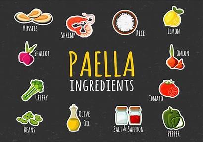 Paella Illustration Vector Ingredients Clipart Drawn Garlic