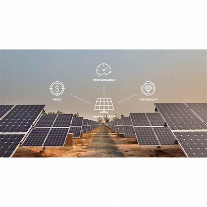 Solar Panel Cells Usa 365w 295w G4