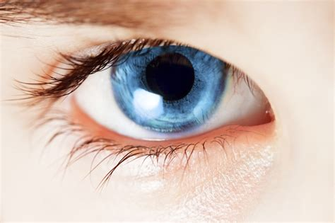 Blue Eyed by Irreducible Complexity