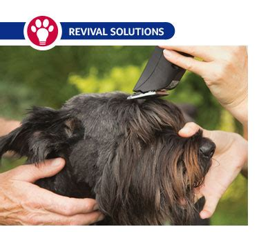 Pet Grooming Clipper Blade Chart Size and Use | Dog ...