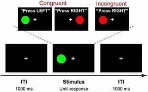 Trial Structure And Stimuli  A Four