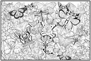 doug jumbo color in poster butterflies free