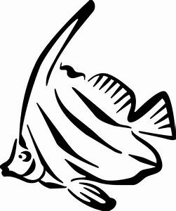 Angelfish Clipart Black And White