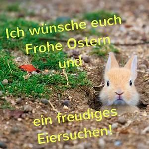 50+ schöne Frohe Ostern Bilder für Euch Kostenlos, cool