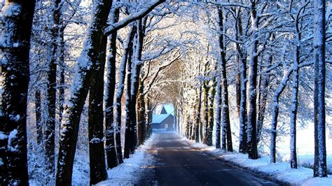 house      snowy road  ultrahd wallpaper