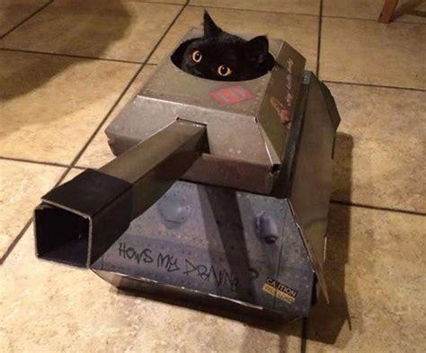 cardboard tanks  planes  cats     cats