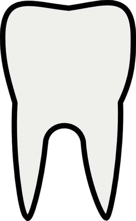 tooth molar clip art  clkercom vector clip art