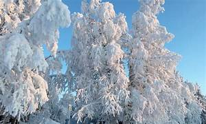 Karesuvanto 2020  Best Of Karesuvanto  Finland Tourism