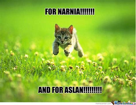 Narnia Memes - book nerd reviews