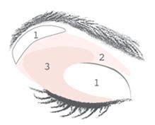 Diagram For Eye Makeup by Smokey Eye Diagram Jpg Tips Smoky