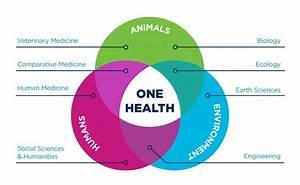 One Health Blog