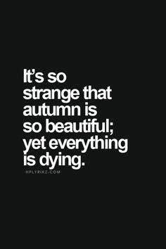 Philosophical Quotes Tumblr  Wwwpixsharkcom Images