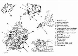 1996 Honda Passport Serpentine Belt Routing And Timing