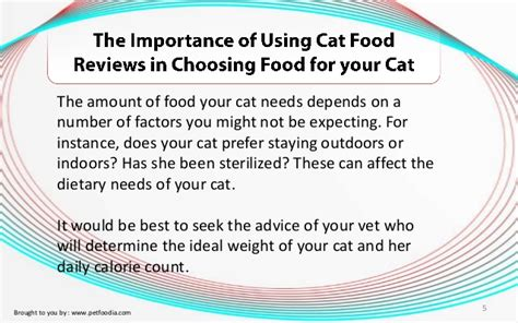The Importance Of Using Cat Food Reviews In Choosing Food