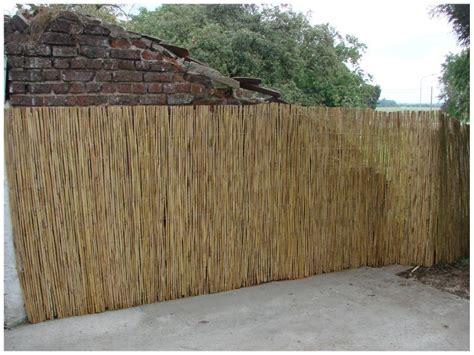 mur de bambou exterieur du travail des nouvelles de moi